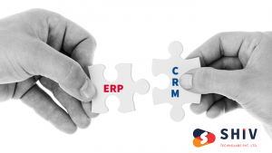 ERP and CRM Software Development Services